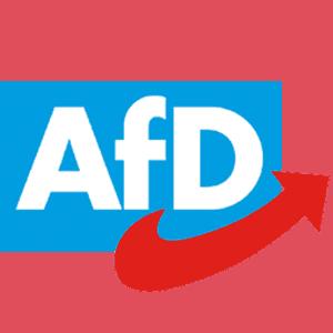 Sebastian Münzenmaier AfD MdB | AfD Mainz