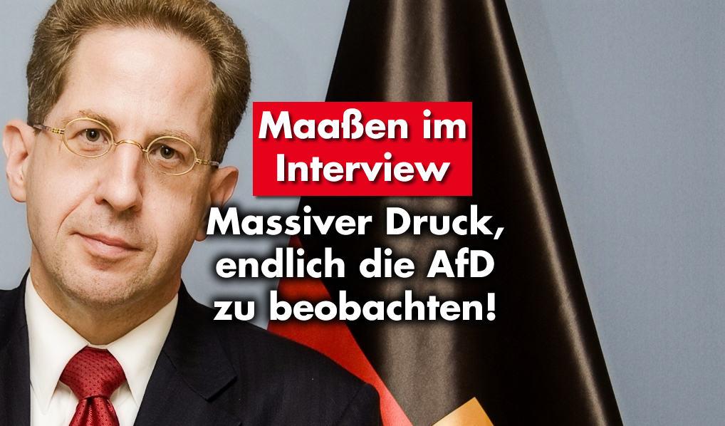 Hans-Georg Maaßen: Massiver Druck, endlich die AfD zu beobachten