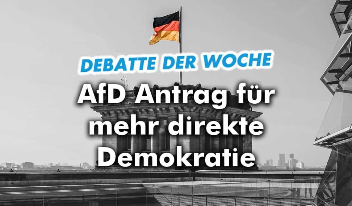 AfD für mehr direkte Demokratie