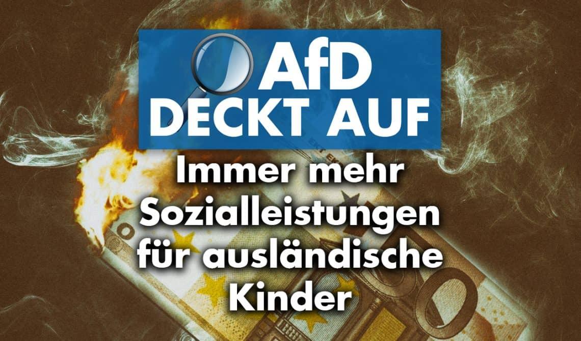 AfD deckt auf: Immer mehr Sozialleistungen für ausländische Kinder