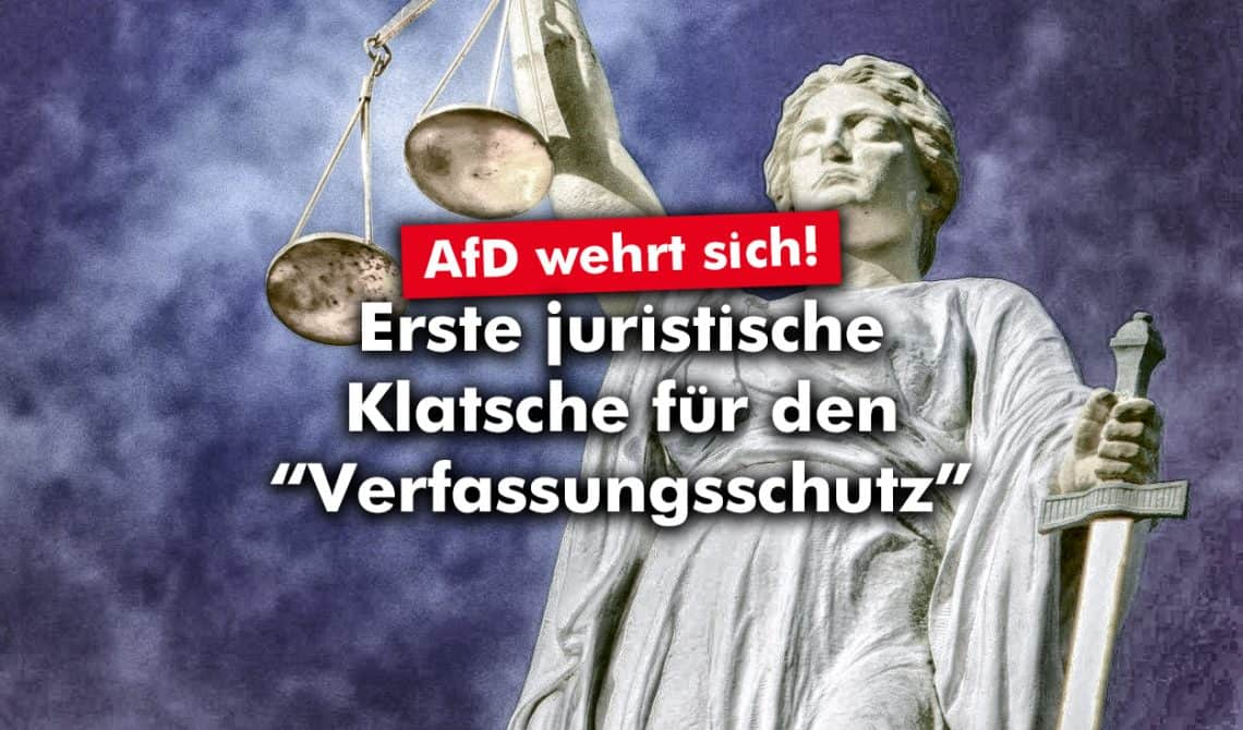 AfD: Erste juristische Klatsche gegen den