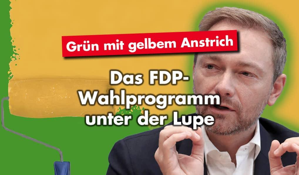 Grün mit gelbem Anstrich: Das FDP-Wahlprogramm unter der Lupe