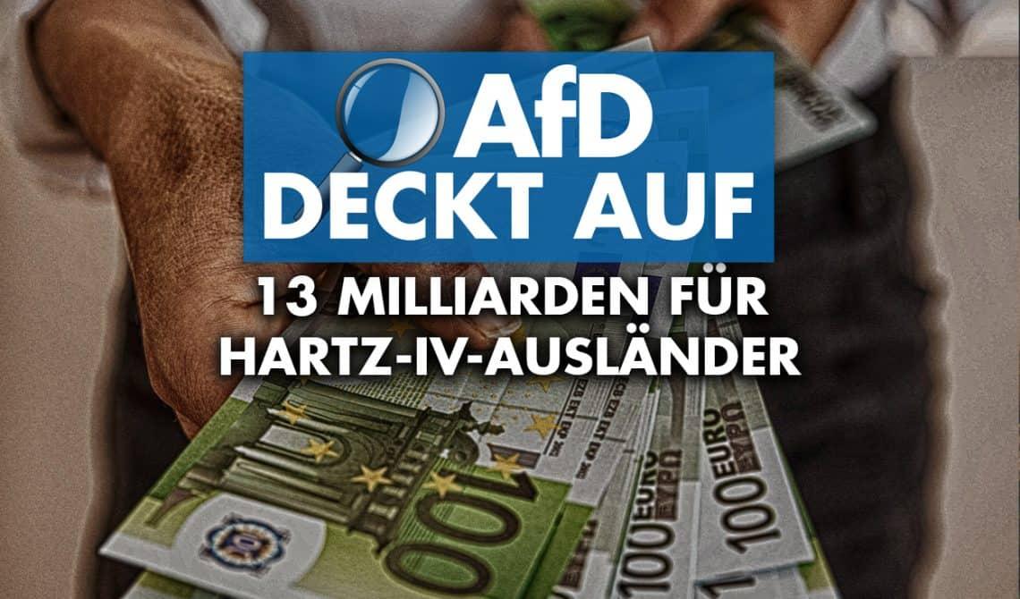 AfD deckt auf: 13 Milliarden Euro für Hartz-IV-Ausländer