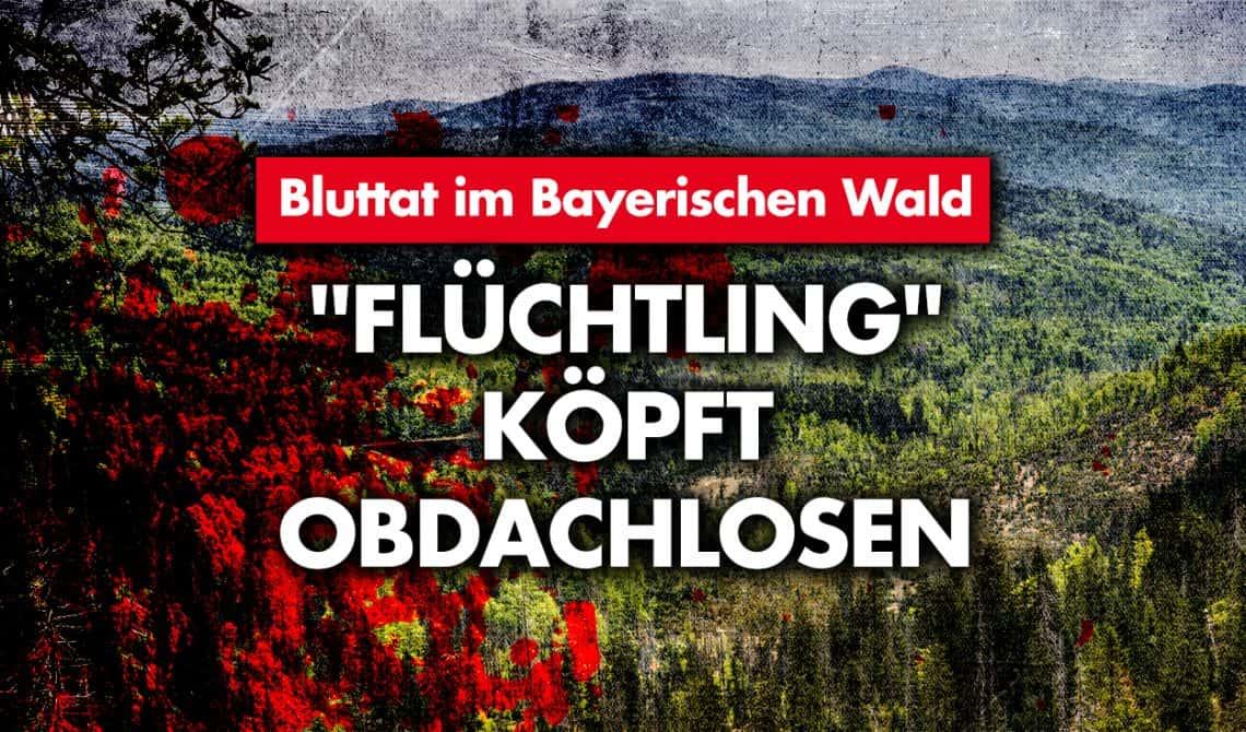 Bluttat im Bayerischen Wald:
