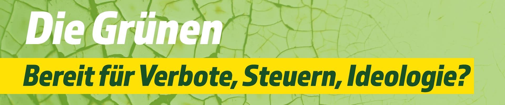 Grüne zur Bundestagswahl - Banner