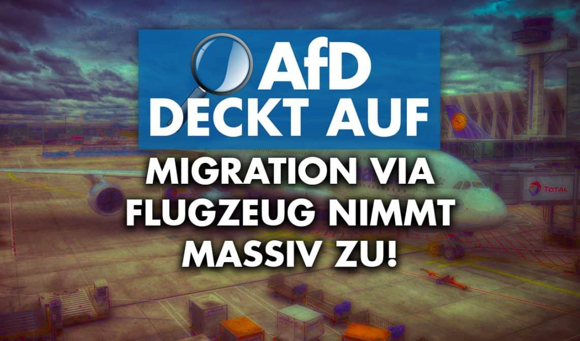 AfD deckt auf: Migration via Flugzeug nimmt massiv zu!