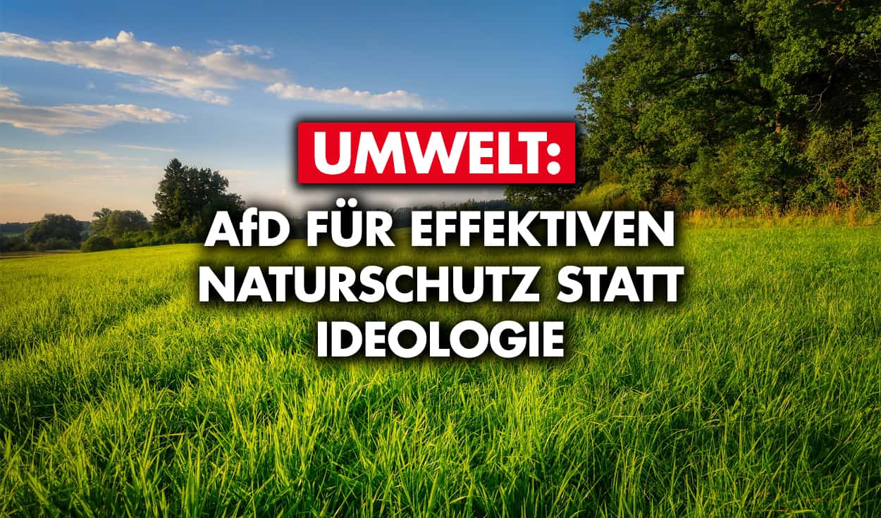 Umwelt: AfD für effektiven Naturschutz statt Ideologie